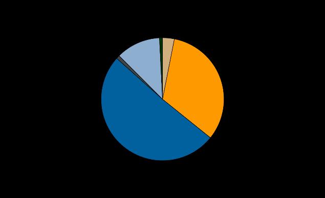 Prisoner by ethnicity June 2014