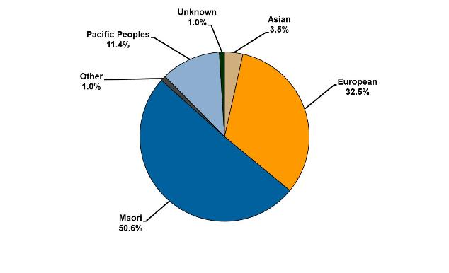 Pie chart showing ethnicity of prisoners